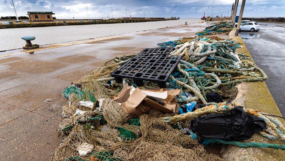 Recupero e riciclo del marine litter per un'economia circolare – Fiumicino