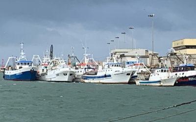 Le novità del piano pluriennale per la pesca a strascico nel Mediterraneo occidentale – Reg. (UE) n. 2019/1022